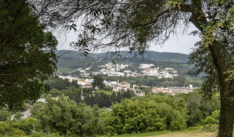 Redescubriendo el valle de La Cañada