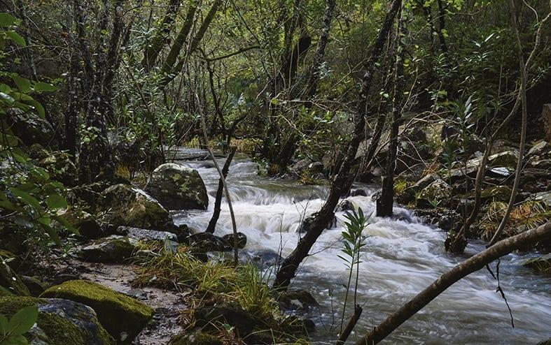 Ruta Arroyo de Valdeinfierno
