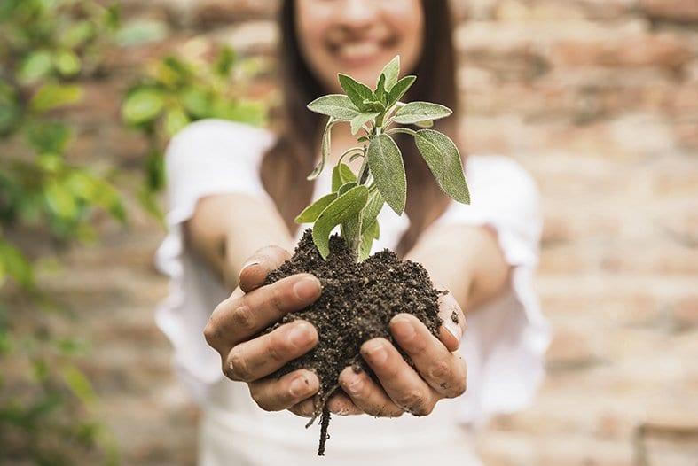 Apuesta por la biodiversidad y la salud ambiental